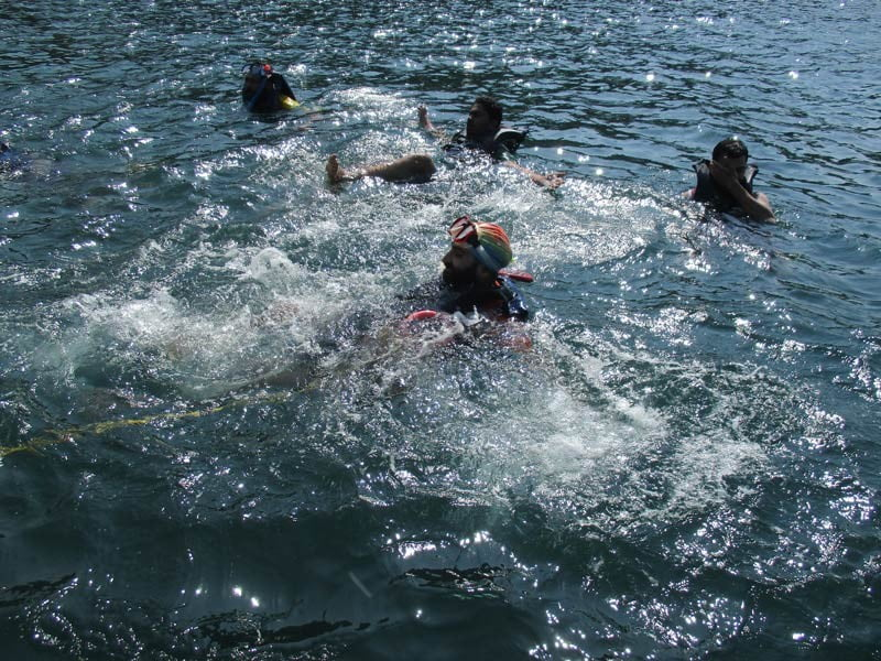 Grand-island-snorkeling-tour